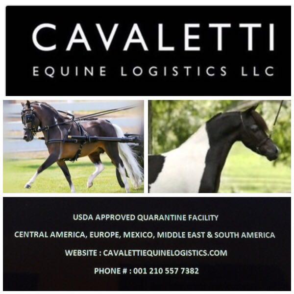 cavaletti equine logistics llc